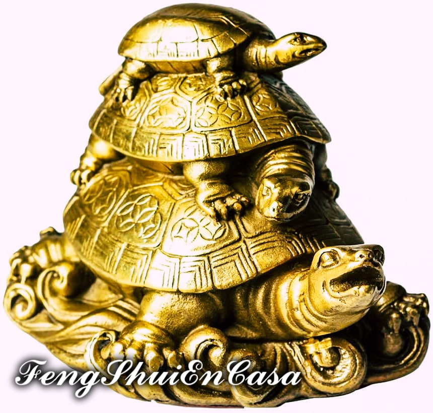 tortuga feng shui donde colocar