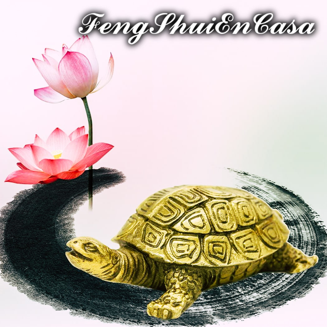 tortuga Feng Shui significado